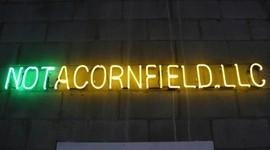 Not a Cornfield!