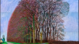 David Hockney, Bigger Trees Nearer Water