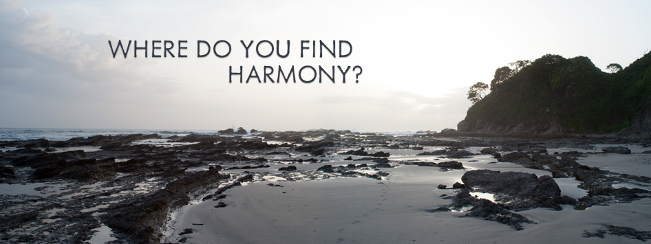 Where Do You Find Harmony?