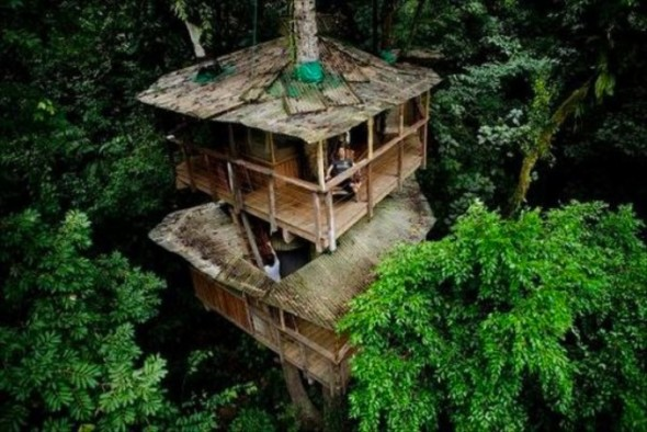 sq-tree-house-11